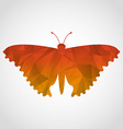 beautiful butterfly vector image