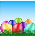 beautiful eggs on grass vector image