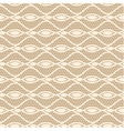 Seamless white lace pattern vector image vector image