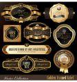 set golden luxury frames vector image vector image