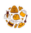 set of honeycombs beehive bee vector image