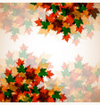 autumn background maple leaves for your design vector image