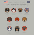 dogs in the united states american dog breeds vector image vector image