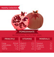 healthy collection pomegranate vector image vector image