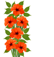 Holiday background with orange beautiful flowers vector image vector image