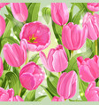 seamless pattern beautiful pink tulips vector image vector image