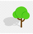 tree isometric icon vector image vector image