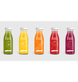 Glass juice bottle brand concept vector image
