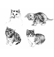black and white cats and kittens inkn hand drawn vector image vector image