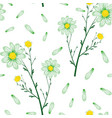 bouquet daisies seamless pattern white vector image vector image