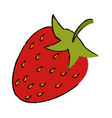 drawing strawberry sweet vitamin nature vector image