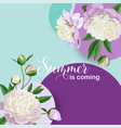 hello summer floral design blooming white peonies vector image vector image