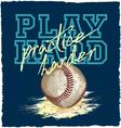 play baseball vector image vector image