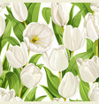 seamless pattern white tulips realistic vector image vector image
