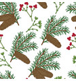 seamless pattern with hand drawn fir cones and vector image
