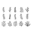 set hand drawn leaf branch with different shape vector image