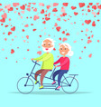 smiling elderly people riding on bicycle vector image