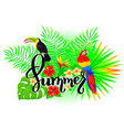 summer bright tropical composition vector image vector image