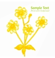 Sunny yellow chamomile background vector image