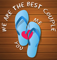 a pair of rubber flipflops on a wood panel vector image