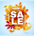 autumn sale seasonal promotion design with red vector image