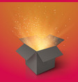 Magic Gift Box with Magic Light vector image vector image