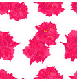 pattern of pink flower on white background vector image