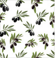 seamless pattern with black olive tree branches vector image