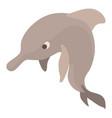 dolphin icon cartoon style vector image