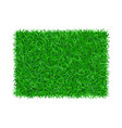 green grass background 3d lawn greenery nature vector image