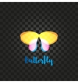 Isolated yellow and pink butterfly logo vector image vector image