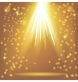 Orange Rays of Magic Lights vector image vector image