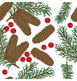 seamless pattern with hand drawn fir cones vector image vector image