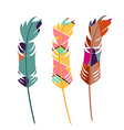 Three color feathers vector image vector image
