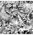 tropical leaves in black and white vector image vector image