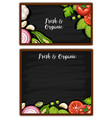 two menu boards with fresh ingredients vector image