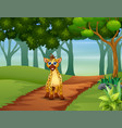 a hyena walking in forest vector image vector image