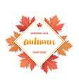autumn sale banner with lettering autumn seasonal vector image