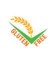 gluten free symbols isolated on white vector image vector image