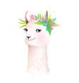 pretty romantic llama or alpaca smiling animal vector image vector image