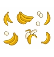 Set of Cartoon Yellow Bananas on white vector image
