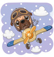 cute pug dog is flying on a plane vector image vector image