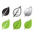herb leaf icon in many style vector image vector image