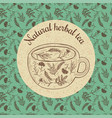 sketch card - herbal tea vector image vector image