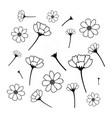 sweet cosmos flowers hand drawn black flower vector image vector image