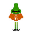 traditional irish hat with beard and elf legs vector image