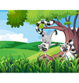 Two playful lemurs at the forest vector image vector image
