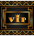 vip card vector image