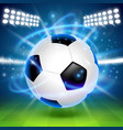 soccer ball on the field cover background vector image