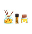 aromatic oil glass jars and stick for spa vector image vector image